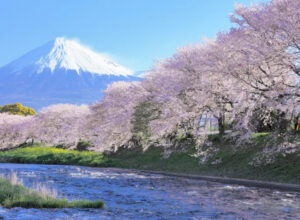 Japan Promotion 3 Days 2 Nights Hotel Package (Airline: CX)